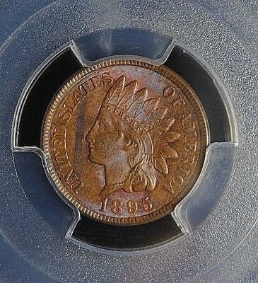 1895 Indian Cent Pcgs Ms 63 Red & Brown