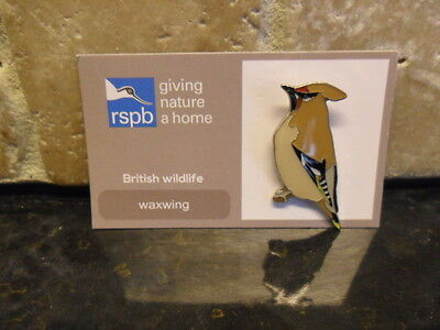 RSPB pin badge waxwing
