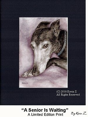 Greyhound Print A Senior Is Waiting Signed Limited Art  Kevin Z  Arttogo NEW