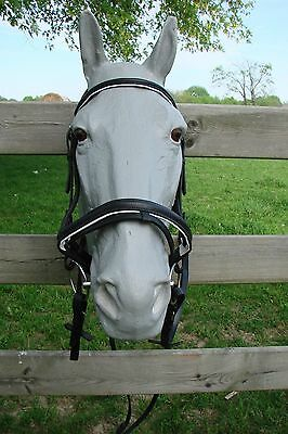NEW Drk Brown & White English/Dressage Schooling w/ Flash, Padded & Raised LOOK!