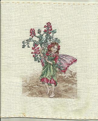 Completed Cross Stitch, Dmc Flower Fairies,the Fumitory Fairy