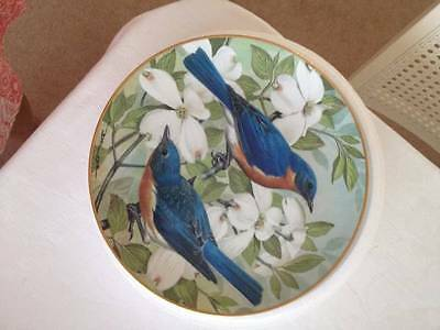 Eastern Blue Bird Fine Porcelain Plate