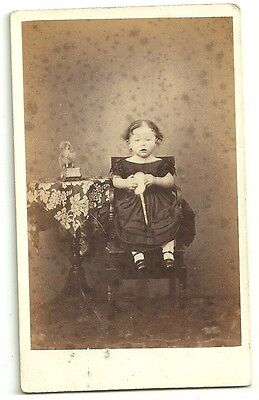 Victorian cdv photo  child toy sheep on wheels unstated  Photographer