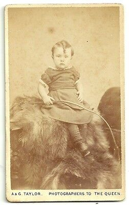 Victorian cdv photo child holding whip Liverpool  Photographer