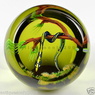 SIGNED CAITHNESS SERPENT Glass Paperweight WILLIAM MANSON LIMITED 50 Units Made