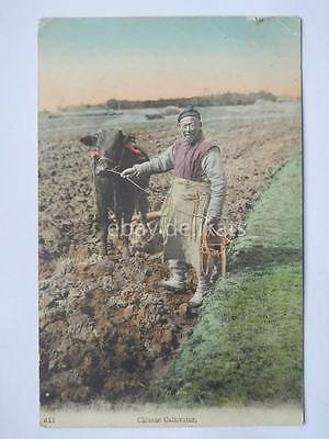 CHINA CINA 中國 Chinese Cultivator old postcard