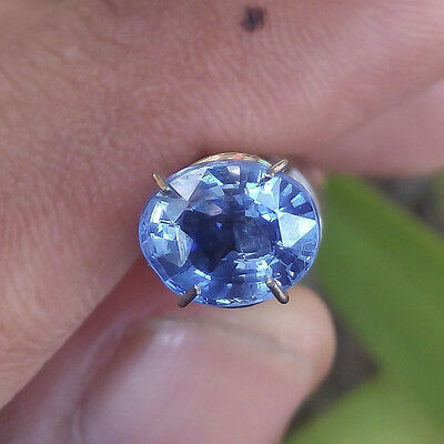 Certified 1.95 Cts Natural Unheated CEYLON BLUE SAPPHIRE Untreated Gemstone BS38