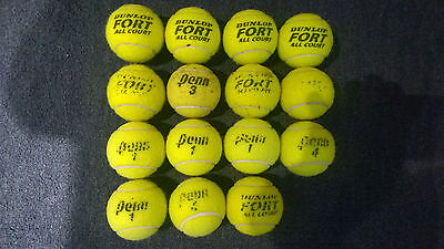 15 Used Tennis Balls (ex Coaching) - Ideal practice or Dogs!