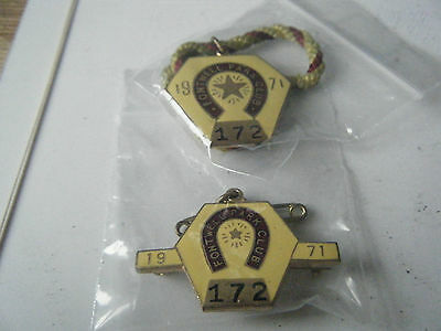 1971  Fontwell Park -  Matching Pair Of Enamel Badges  Numbered 172  Vgc