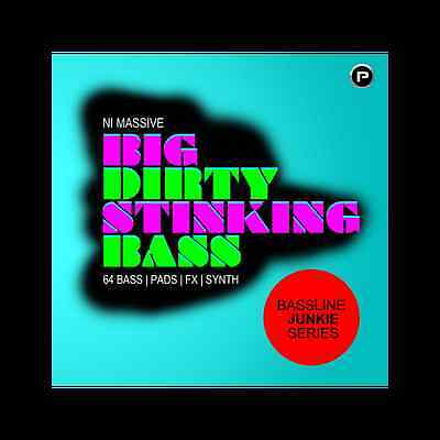 Big Dirty Stinking Bass - Inject this NI MASSIVE steroid - Download or CD