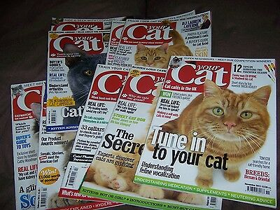Your Cat Magazine - 9 copies from 2013/2014