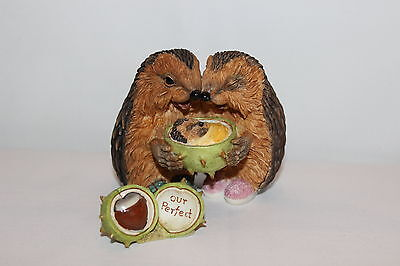 HEDGIES - Our Perfect Love - Hedgehogs with Baby - new in box