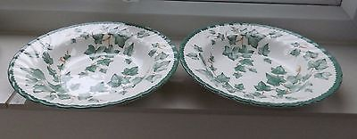 BHS British Home Stores Country Vine / Ivy Leaf      2 x  Flat Rimmed Soup Bowls