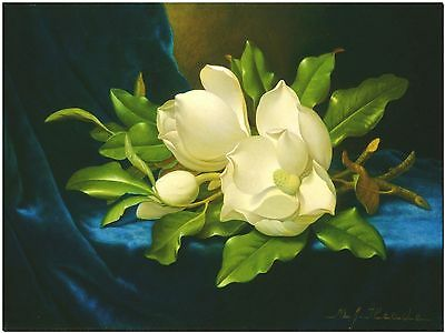 Magnolias on Blue Velvet, by Martin Meade Canvas Print Poster 18X12""