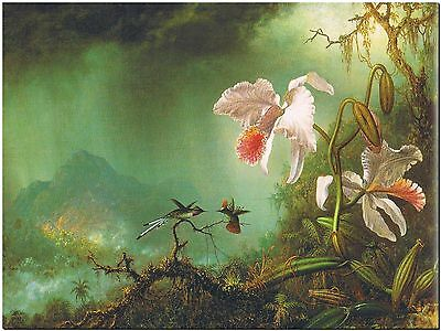 Martin Heade Hummingbird and Orchids #2- Canvas Print Poster 18X12""