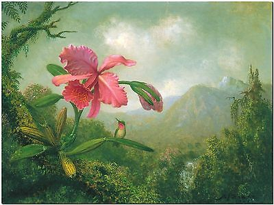 Orchid & Hummingbird by Martin Johnson Heade Canvas Print Poster 18X12""