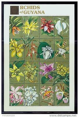guyana / rare orchids full sheet of 16s./mnh.good condition