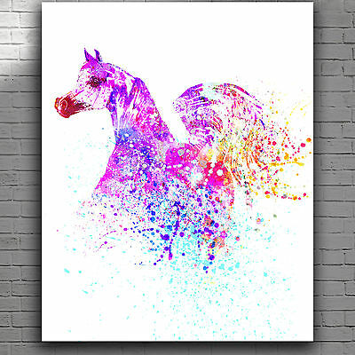 Beautiful Colourful Abstract Watercolor Arabian Horse Canvas Print Poster 8X10""