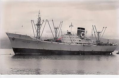 HOBART STAR - Blue Star Line Cargo Ship 1956  - Photograph