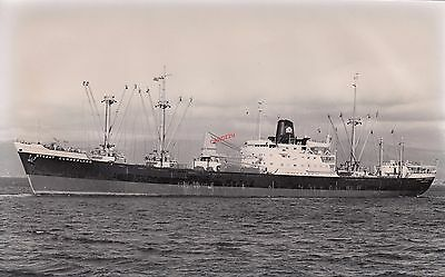 STRAAT CUMBERLAND  Dutch cargo ship 1960 - photograph