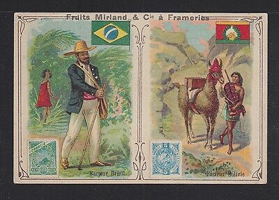 BRAZIL 1900s STAMP DESIGN FRUITS MIRLAND ADVERTISING VICTORIAN TRADING CARD