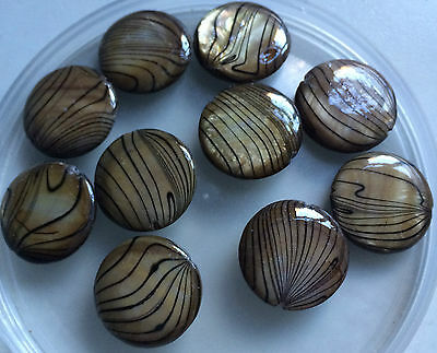 Bronze Banded / Spray Painted / Flat Round Shell Beads - Size 18mm (Approx).