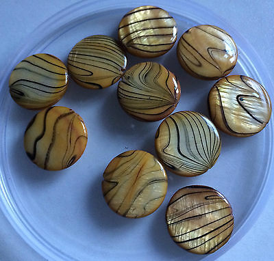 Gold Banded / Spray Painted / Flat Round Shell Beads - Size 18mm (Approx).