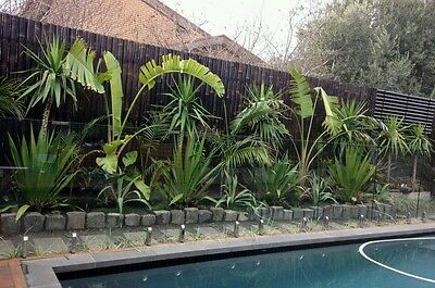 2.2M x 0.9M BAMBOO FENCE PANEL, PRIVACY SCREENS - BROWN - PRE SALE ARRIVE 31/1