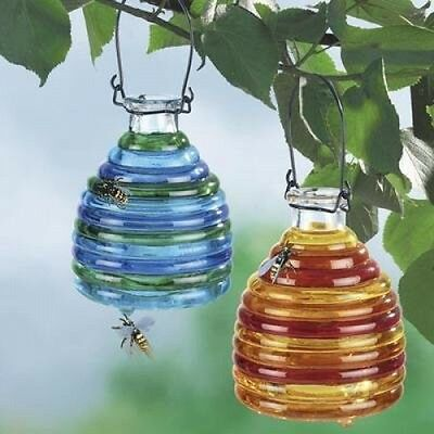 Wenko 71710900 Wasp Trap Glass Coloured 2
