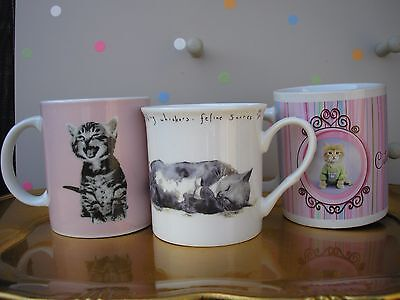 3 Ceramic Mugs with Cats Pictures(Rachael Hale,Sainsbury's and The Leonardo)