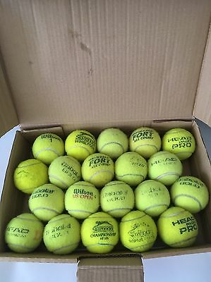 20 Used Tennis Balls For Dogs