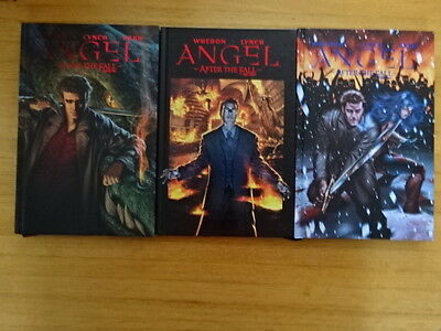 Rare Lot Of 5 Angel Hard Cover Graphic Novels! Idw!
