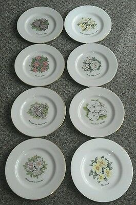 ☆The National Trust Collectible Plates × 8 Dorn Williams Boncath Wales Uk L@@k!☆