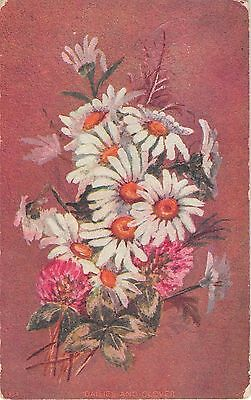 Bouquet of Daisies & Clover on Old Postcard