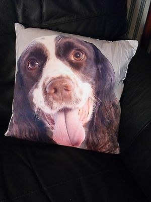 Springer Spaniel Gift Present Small Cushion And Cover Brown And White Springer