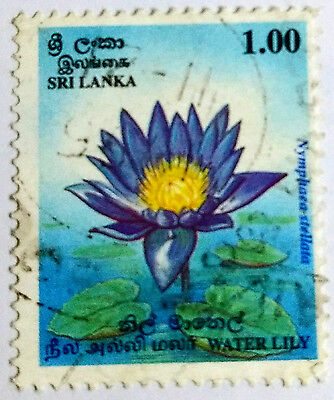 110.sri Lanka Used Stamp Flowers, Water Lily