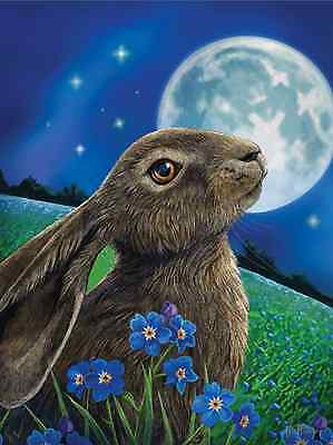 Nemesis Now 3D Picture/Poster Moon Gazing Hare By Lisa Parker