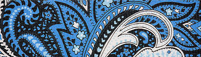 Country Brook Design® 5/8 Inch Blue Paisley Polyester Webbing, 5 Yards