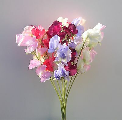 Artificial Silk Flowers : 12  Sweet Peas Stems In Assorted Colours