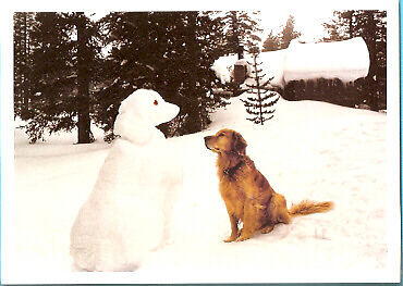 Golden Retriever and Snow Dog Christmas Cards Box 10