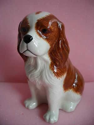 Quail Pottery Large Cavalier King Charles Spaniel Money Box Ideal Gift Boxed.