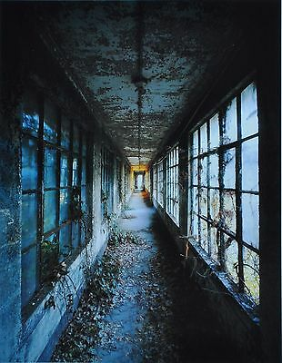 Stephen Wilkes Ellis Island #3 Ltd. Ed. Photo Art Print 27x41cm Corridor #9 1999