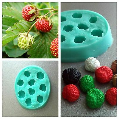 Silicone Mold polymer clay cold porcelain fimo sweets cakes strawberry forest