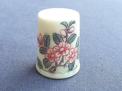 Beautiful Bone Thimble Red Flowering Bush Design
