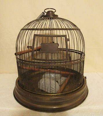 Antique Brass Bird Cage House Victorian With Porcelain Feeders Made In Germany