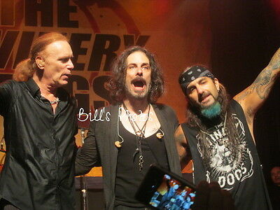 Winery Dogs 8X10 Concert Photo