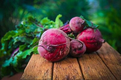 BEETROOT Bulls Blood 50 seeds dark red vegetable garden UNUSUAL HEIRLOOM winter