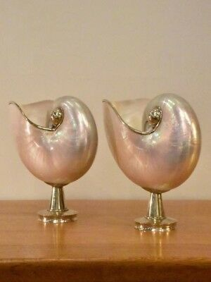 Pair of mounted pearlescent nautilus shells - vintage
