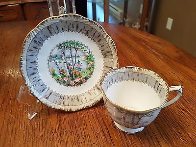 "Royal Albert Bone China Footed Cup & Saucer Set ""silver Birch"""