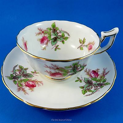 Pretty Moss Rose Royal Chelsea Tea Cup and Saucer Set